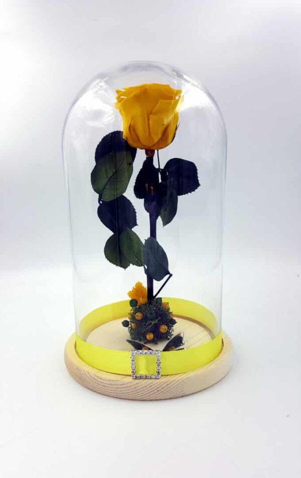 trandafir criogenat galben wide flowers in cupola de sticla