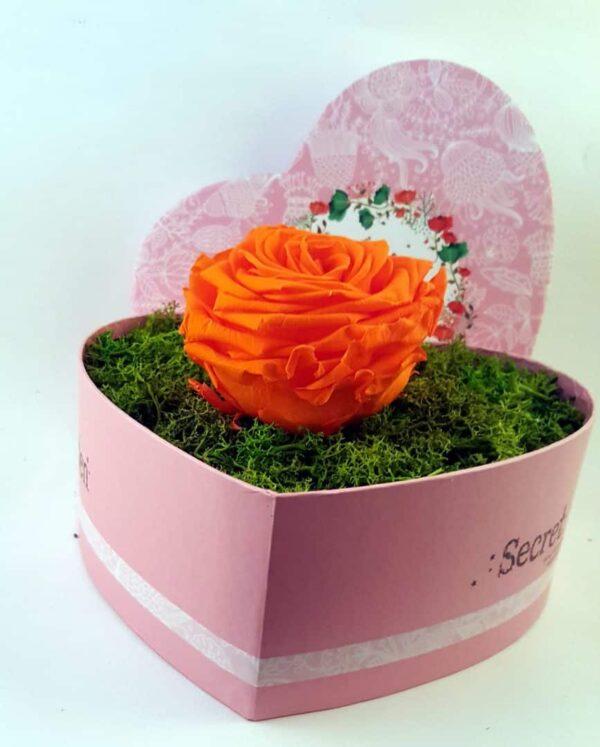 Trandafir Criogenat 9cm Natural într-o cutie mare în formă de inimă