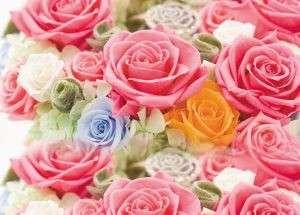 Trandafirii conservati