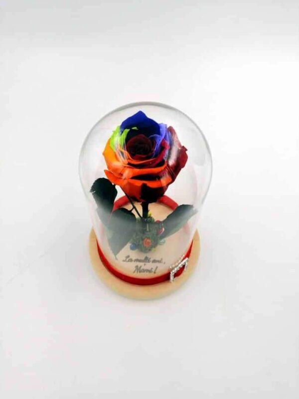 trandafir criogenat multicolor