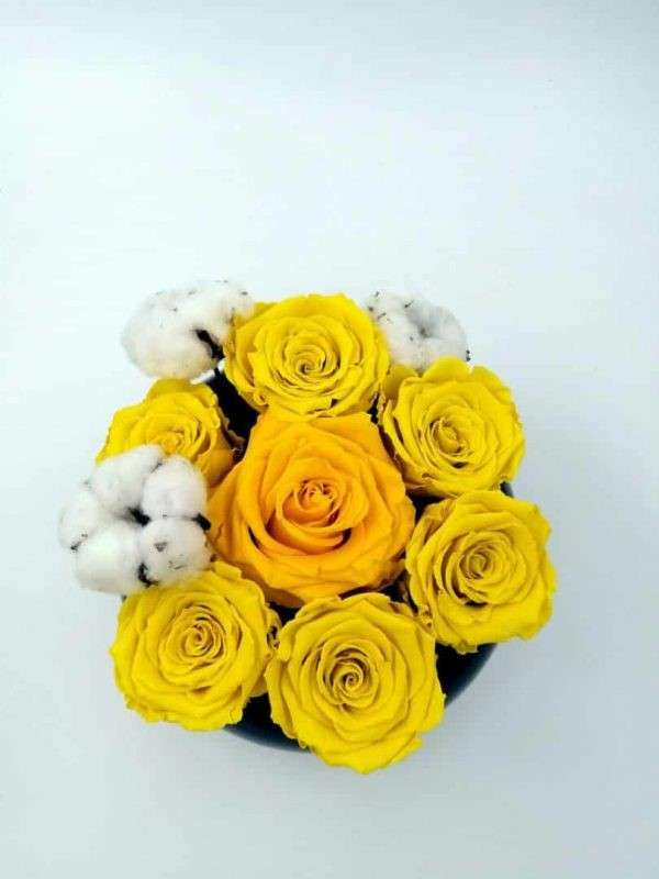 Aranjament Trandafiri Criogenați Naturali în vas ceramica piano black