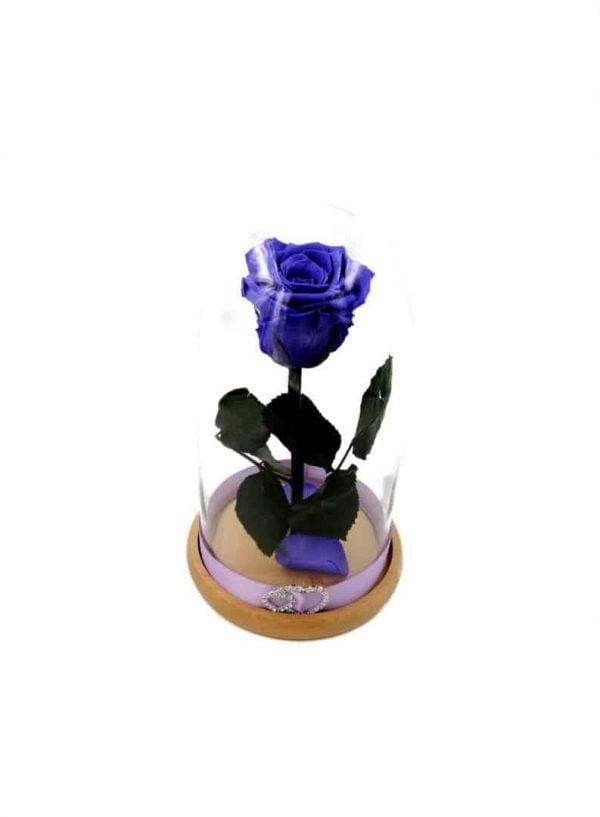 trandafir criogenat indigo