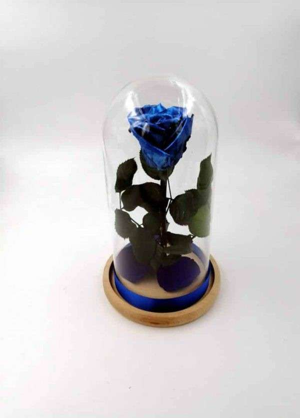 Trandafir criogenat natural albastru metalizat Wide Flowers