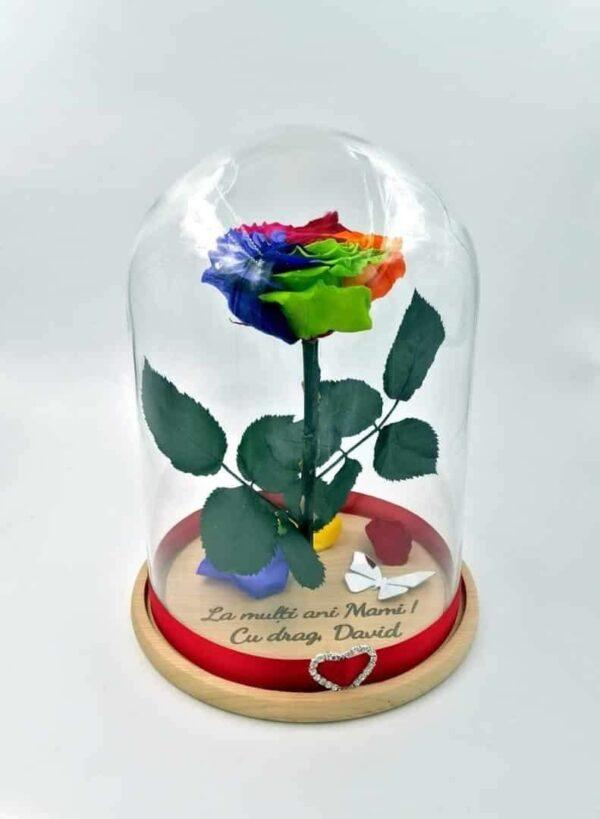 Trandafir Criogenat Natural Wide Flowers gigant