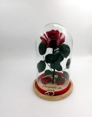 trandafir criogenat